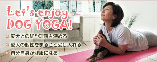 Let's enjoy <br >DOG YOGA! 愛犬との絆や理解を深める、愛犬の個性をまるごと受け入れる、自分自身が健康になる